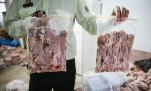 کشف گوشت فاسد در یخچالهای مخفی یک فروشگاه زنجیرهای ساوه