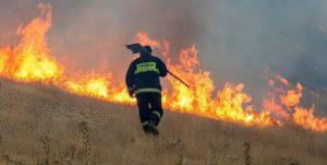 آتش زدن سفال در مزارع ساوه آتش را به مزرعه گندم رساند