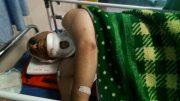 محیطبان ساوهای به دست شکارچیان غیرمجاز مجروح شد