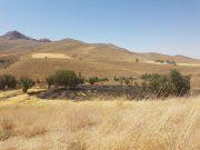 حریق دو هکتار از اراضی در منطقه نوبران
